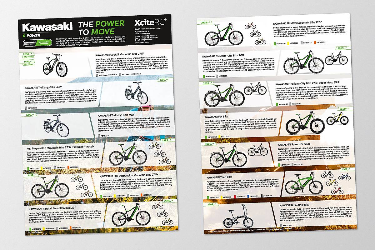 Kawasaki E-Bike Flyer